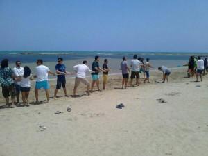 Beachworking en SE-onthebeach. Jjuego de la cuerda, una de las actividades que fomentan la comunicación entre los asistentes. Uuna forma alternativa de networking